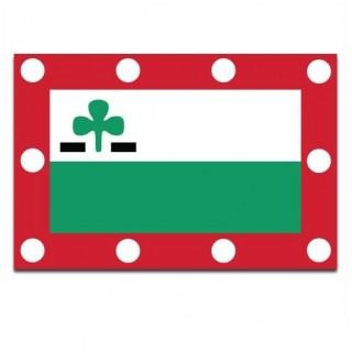 Gemeente vlag Meppel