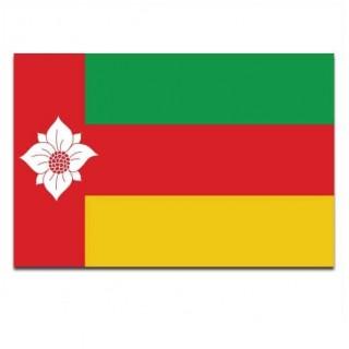 Gemeente vlag Tynaarlo