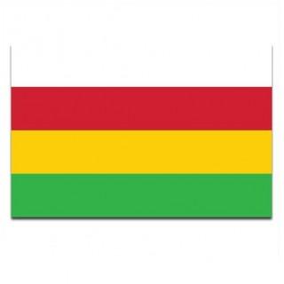 Gemeente vlag Dantumadeel
