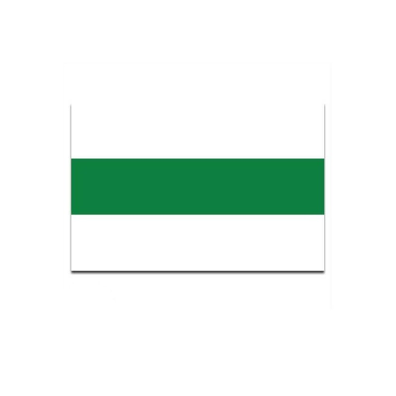 Gemeente vlag Groningen