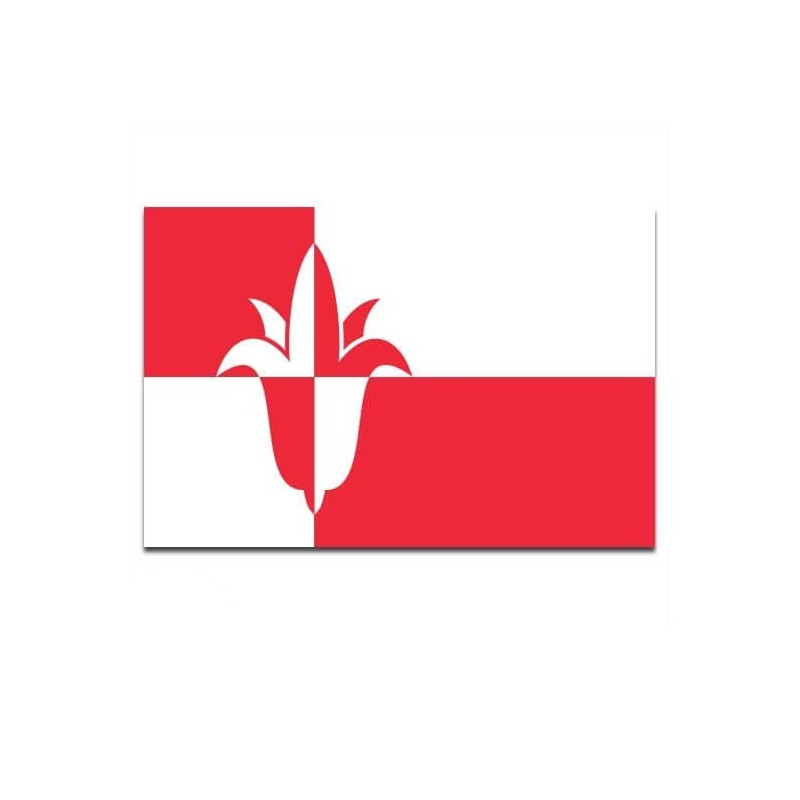 Gemeente vlag Bernheze