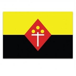 Gemeente vlag Best