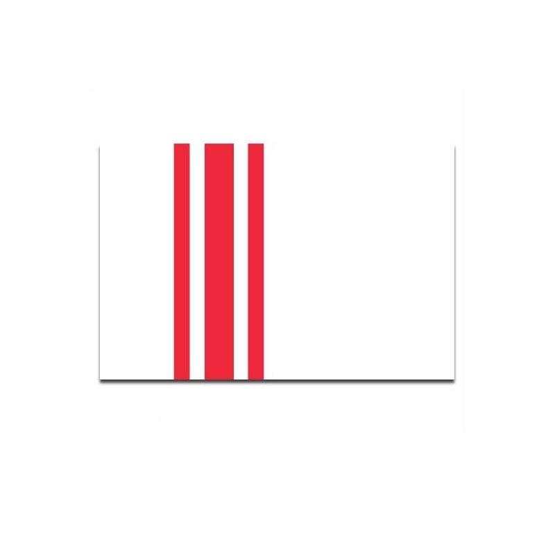 Gemeente vlag Oisterwijk