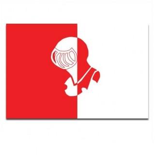 Gemeente vlag Helmond
