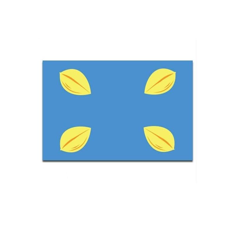Gemeente vlag Hilversum