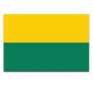Gemeente vlag Den Haag
