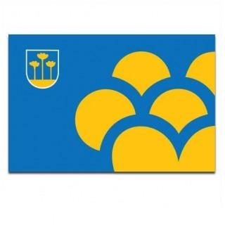 Gemeente vlag Zoetermeer