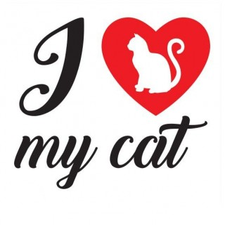 I love my cat katten sticker