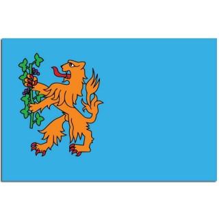 Gemeente vlag Brummen