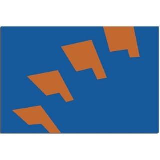 Gemeente vlag Berkelland