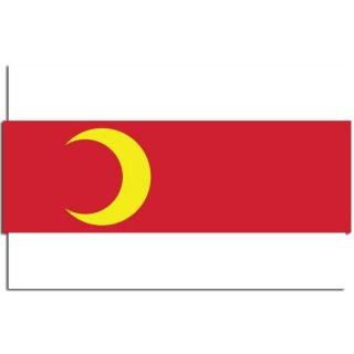 Gemeente vlag Doesburg