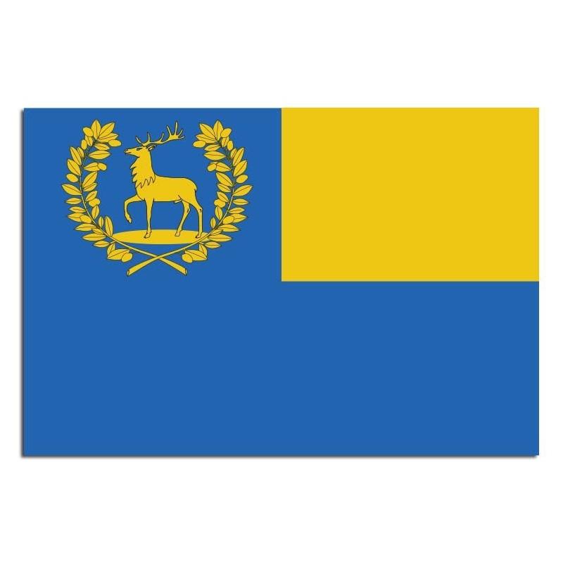 Gemeente vlag Epe