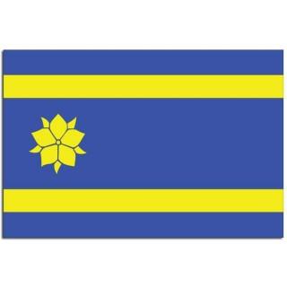 Gemeente vlag Hattem