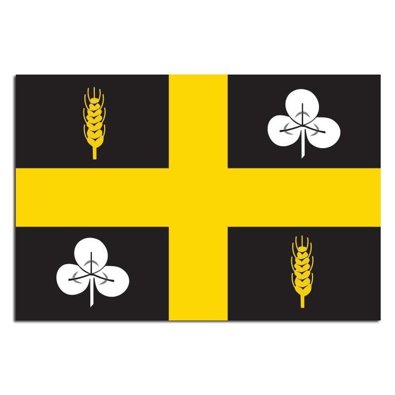 Gemeente vlag Raalte