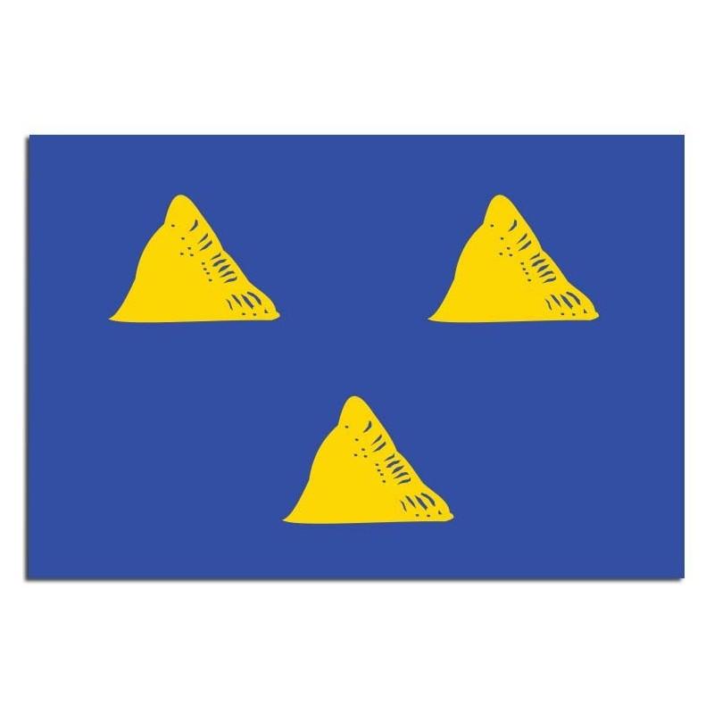 Gemeente vlag Tubbergen