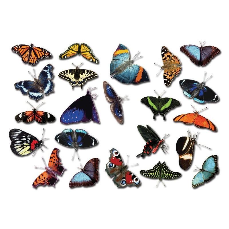 fiets stickers vlinders set