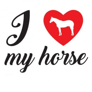 I love my horse Paarden sticker