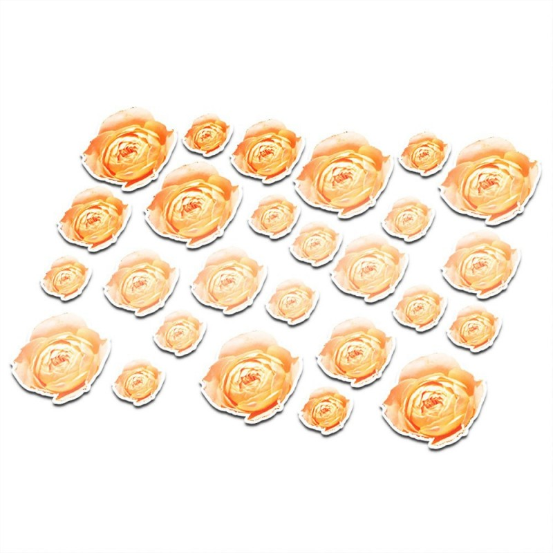 Fietsstickers Rose Rozen bloemen set 17