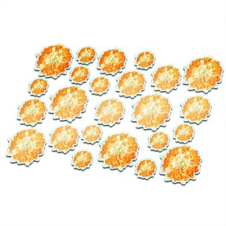 Fietsstickers Orange bloemen set 18