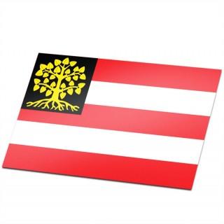 Gemeente vlag 's-Hertogenbosch