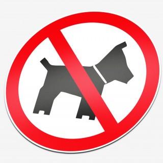 Verboden voor honden 1