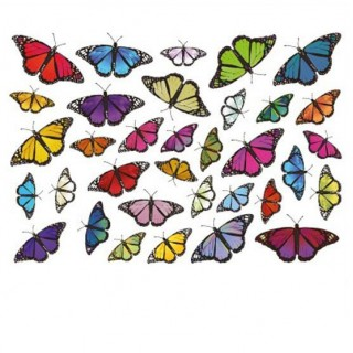 Fiets stickers Vlinders set 1