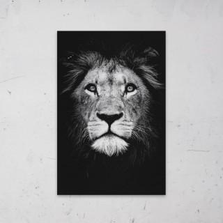 Leeuw Zwart Wit geprint op Aluminium