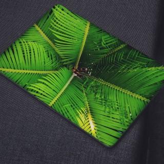 Exotische Bladeren Laptop Sticker