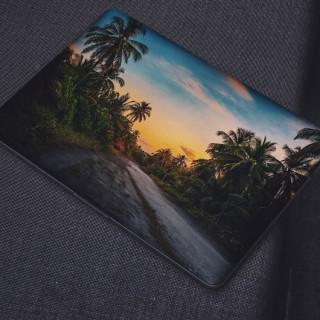 Kokosbomen Laptop Sticker