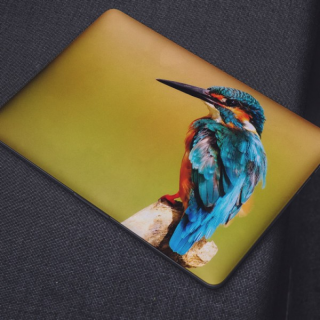Avian Laptop Sticker