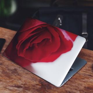 Rode Roos Links Laptop Sticker