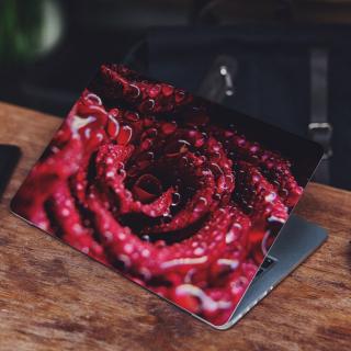 Rode Roos met Druppels Laptop Sticker