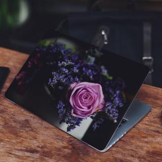 Roze Roos in Boeket Laptop Sticker