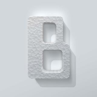 Piepschuim Letter B Checkbook