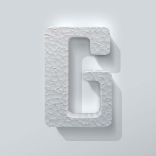Piepschuim Letter G Checkbook
