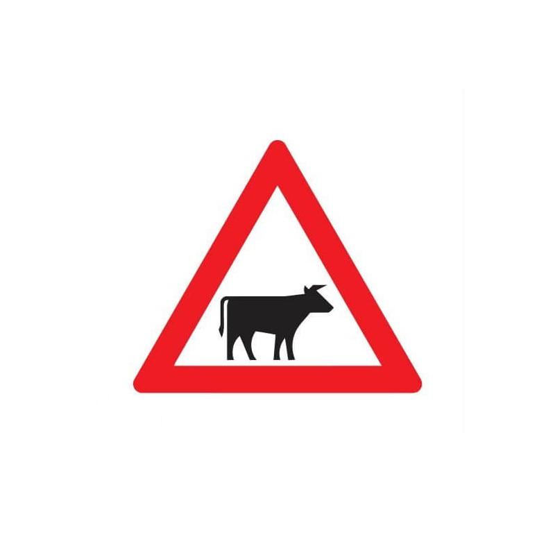Pas op vee Sticker