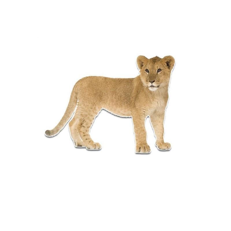 Kleine tijger muursticker