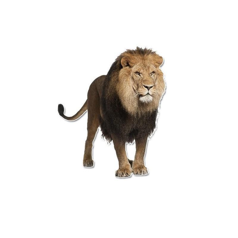 Leeuw muursticker