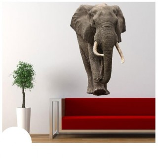 Big Olifant muursticker