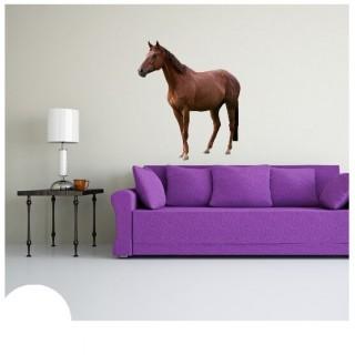Paard muursticker