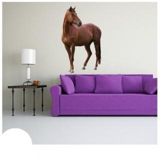Voorkant paard muursticker
