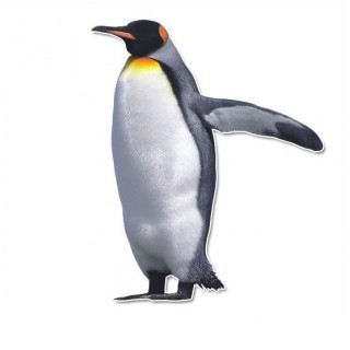 Pinguin muursticker