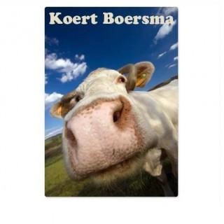 kofferstickers koe